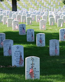 picture from :http://en.wikipedia.org/wiki/Memorial_Day