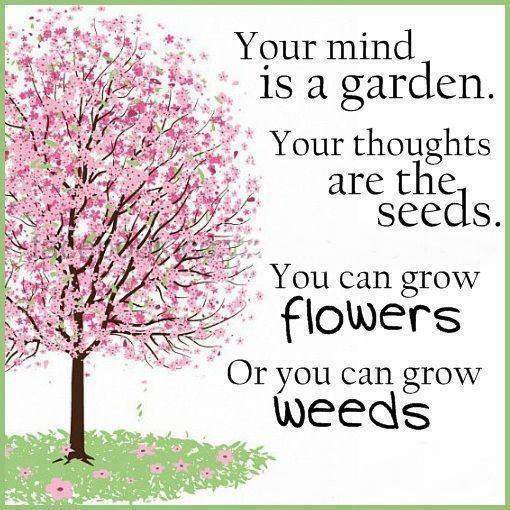 mind is a garden