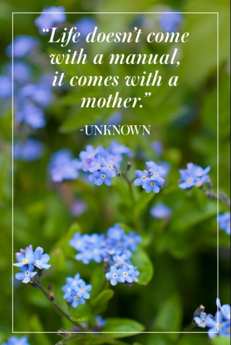 14 Inspirational Mother's Day Quotes